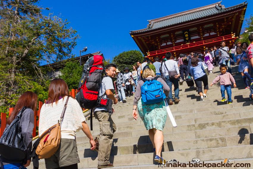 鎌倉 八幡宮 バックパッカー Backpacking in Kamakura, Japan