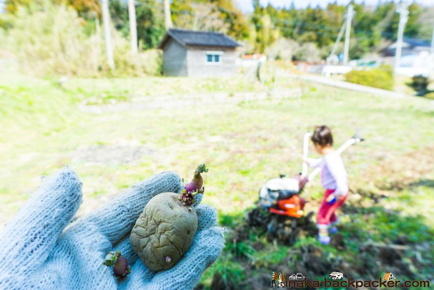 穴水町 岩車 畑 ジャガイモ 植え方