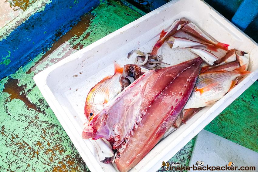 田舎暮らし 魚介類