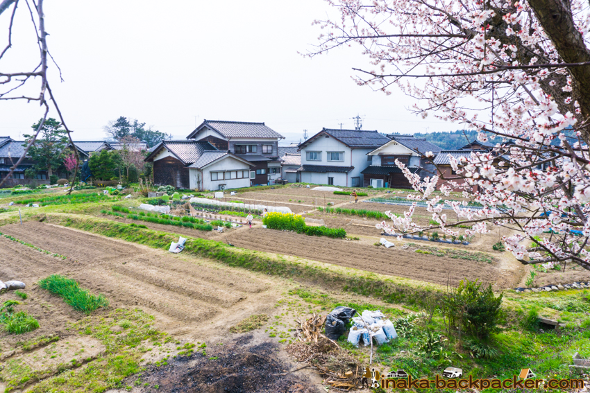 田舎旅  travel countryside