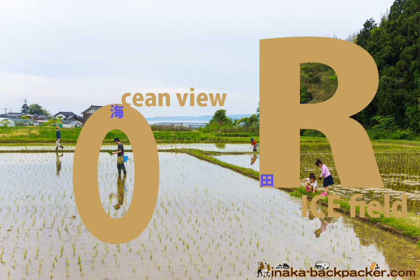 田舎時間 田植え inaka jikan rice activity
