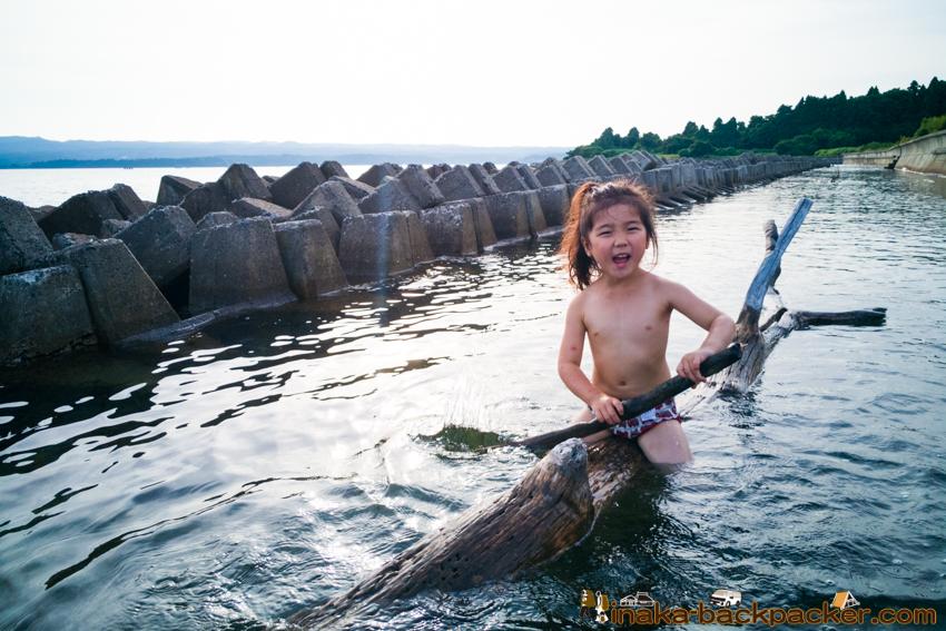driftwood boat 流木 船