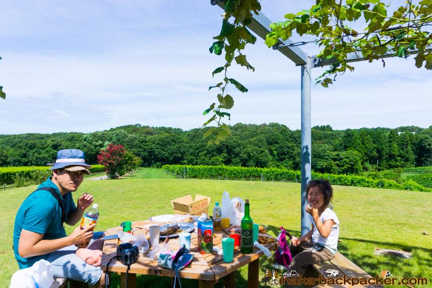 Noto Wine lunch 能登ワイン ブランチ 食事