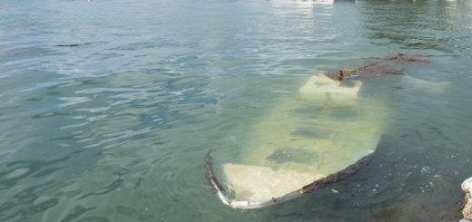 storm in Japan sunken ship wreck 台風21号 船 沈没 穴水町 石川県