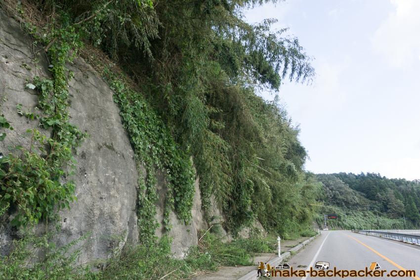 台風21号 穴水町 道路