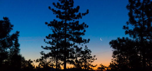 オレゴン 夜景