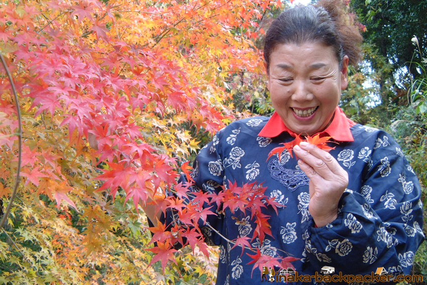 Kamikatsu Tokushima いろどり おばあちゃん 西影さん
