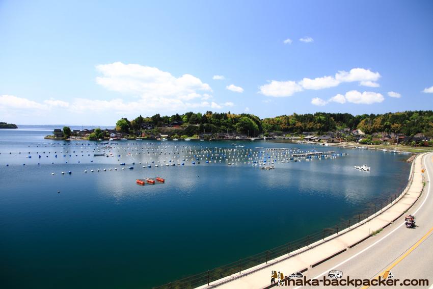 Oyster in Iwaguruma Anamizu Noto Ishikawa 牡蠣 岩車 穴水町 石川県 能登