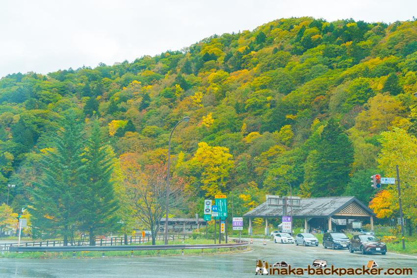 岐阜県 平湯 紅葉 autumn hirayu gifu