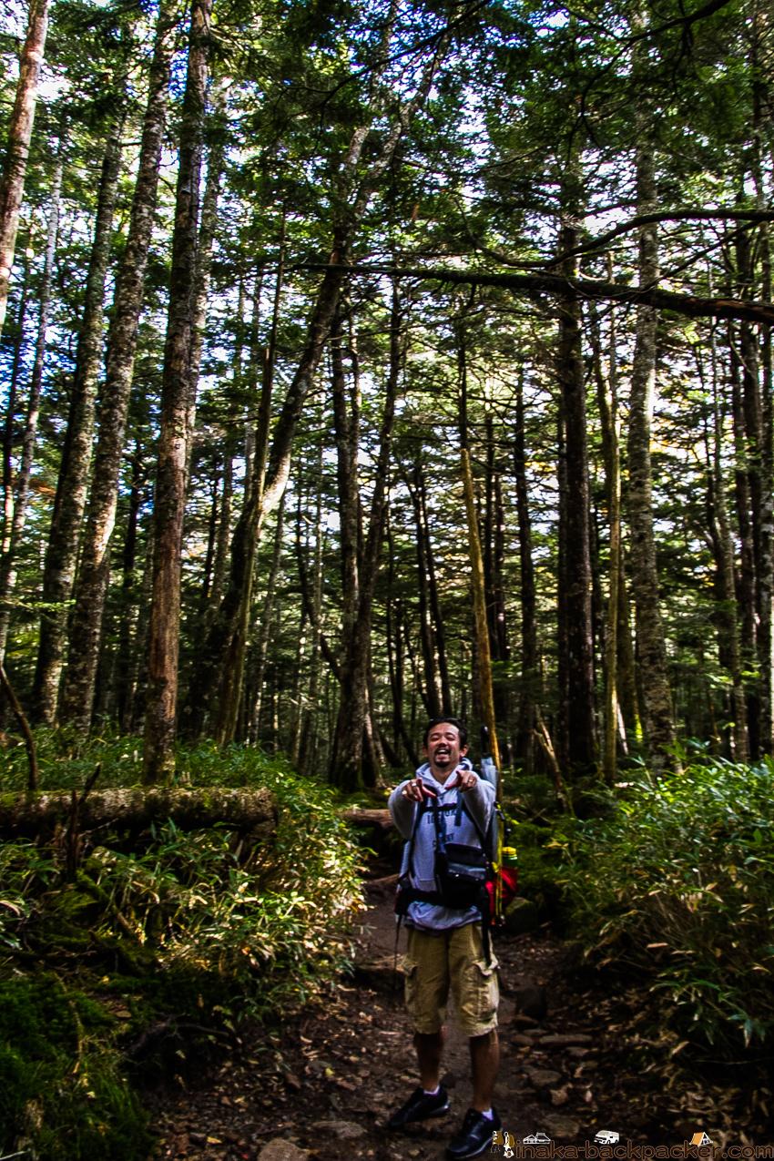 長野県 白駒の池 散策 山道