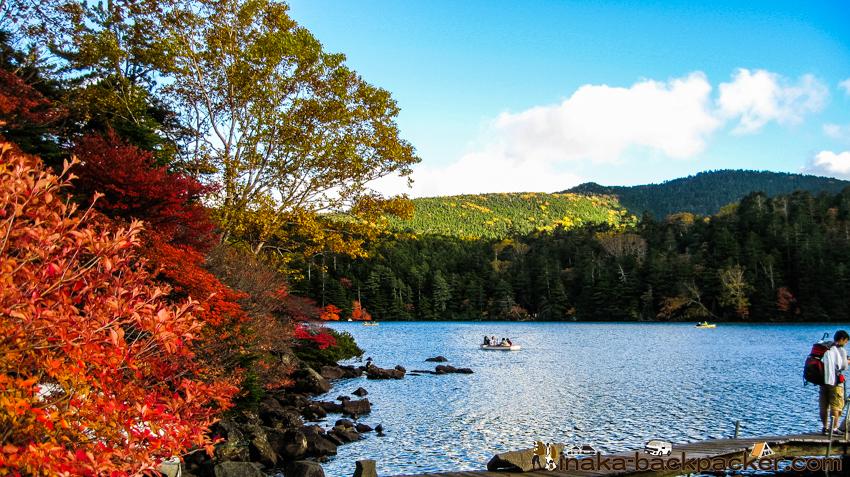 長野県 白駒池 紅葉