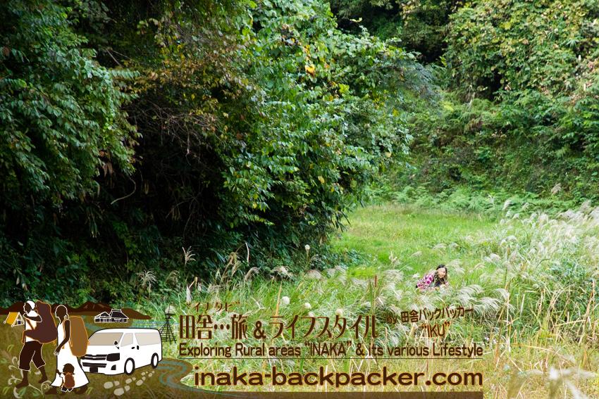 石川県穴水町から輪島への途中。バックパックを置いて、森の中でこっそり...一体なにやってるんだ...!?