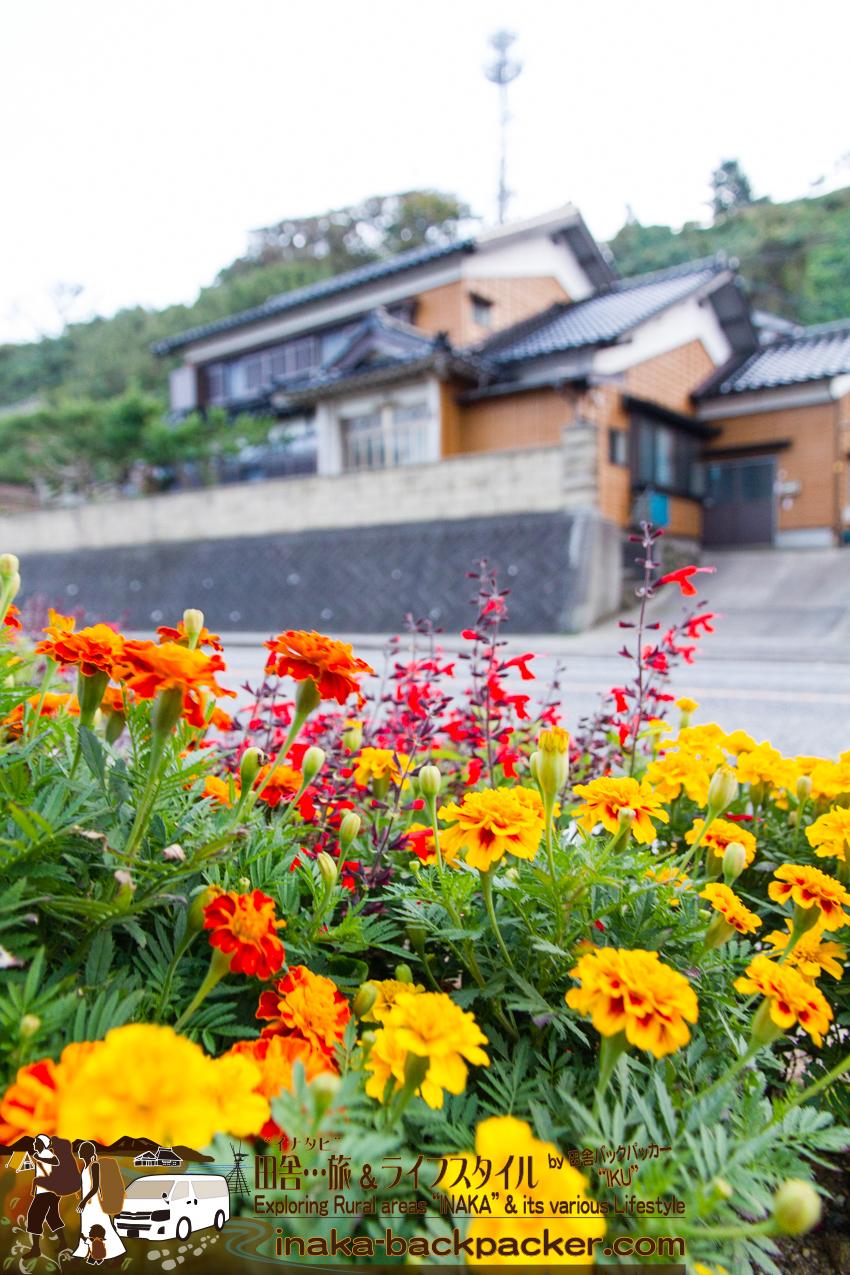 石川県珠洲市 - 綺麗な花でデコレーションしている道。気分が明るくなるね。