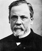 ルイ・パスツール Louis Pasteur 酵母 アルコール発酵