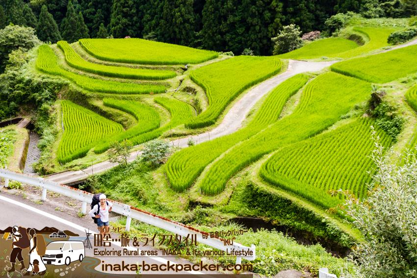 徳島県上勝町 樫原の棚田 歩く バックパッカー 旅行 tokushima kamikatsu rice terrace walking