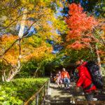 kamakura enkakuji temple backpacker 鎌倉 遠隔時 バックパッカー 旅