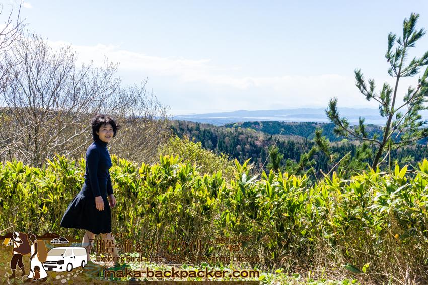 高州山からの眺め