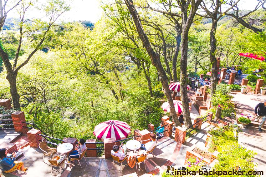鎌倉 樹ガーデン 穴場 カフェ itsuki garden kamakura 人気カフェ
