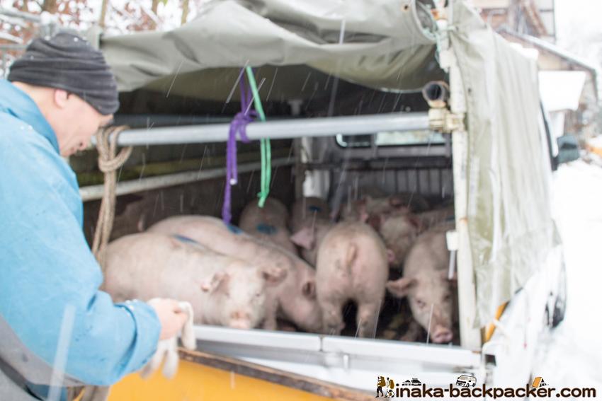 穴水町 道坂 イベリコ豚 Anamizu Michizaka pork