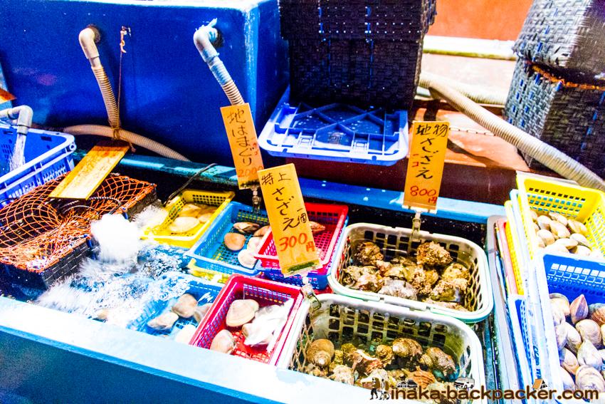 江の島 サザエ 価格 enoshima expensive