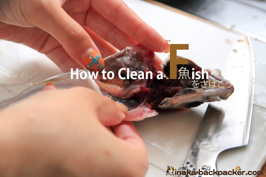 魚 さばき方 how to clean a fish