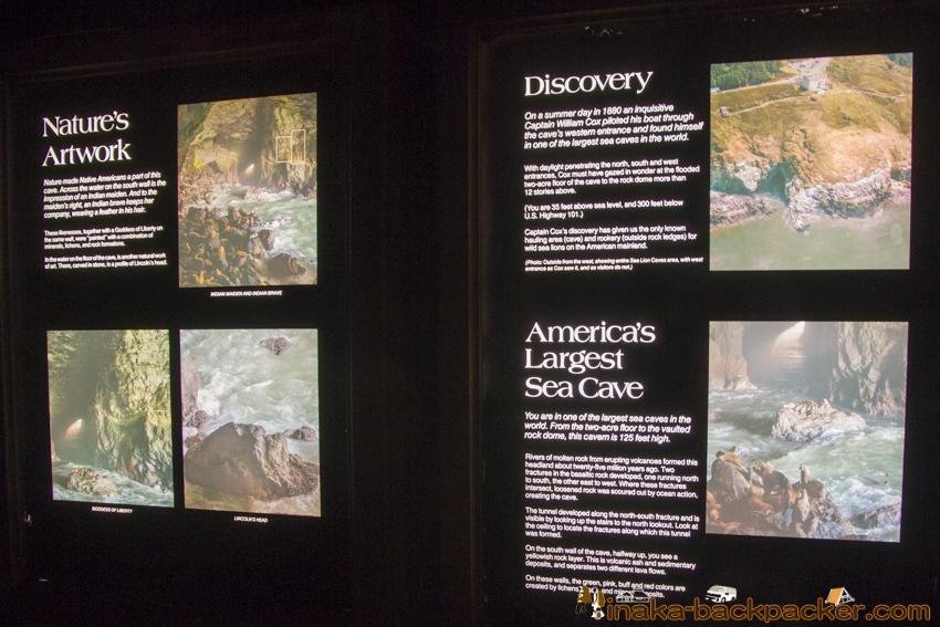 Oregon Sea lion Caves オレゴン アシカ 洞窟
