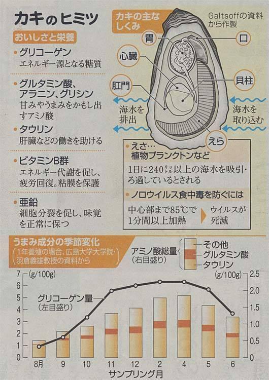 朝日新聞 かき 栄養 ひみつ