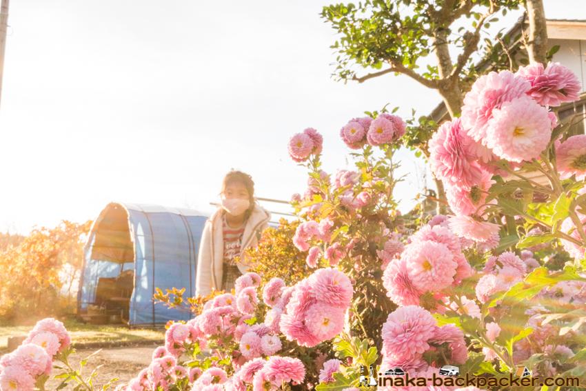 地方移住 小学校 子育て 教育 穴水町 石川県